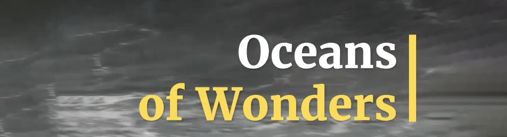 Oceans of Wonders
